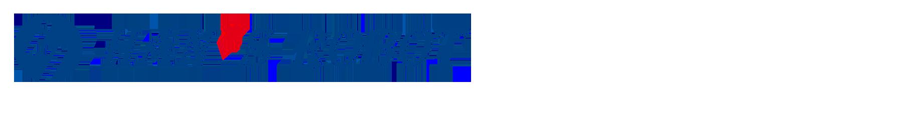 Hans Robot